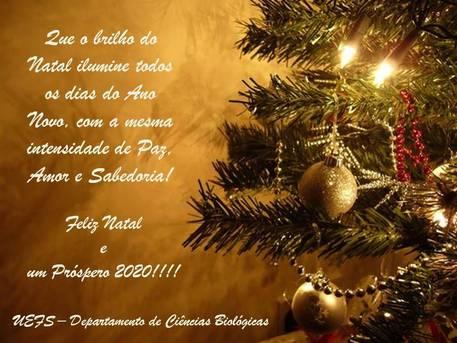 Feliz Natal e um Ano Novo cheio de realizações!!